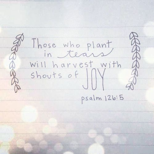 Bible Verse Psalm Faith