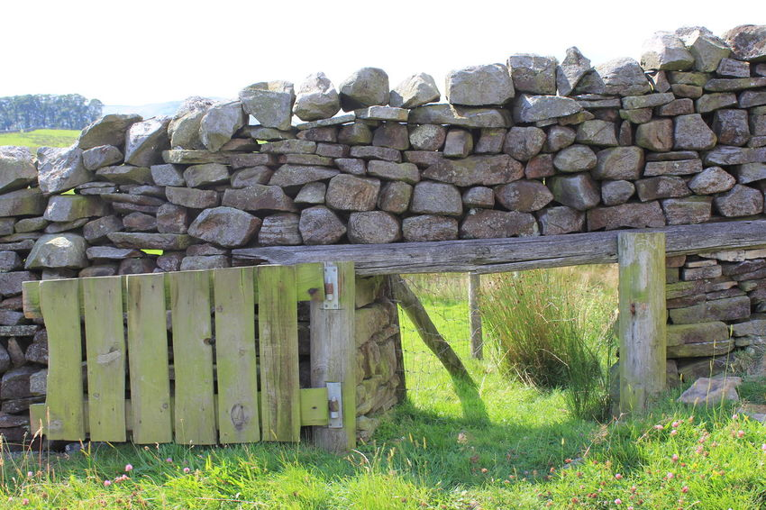 Fence Grass No People Outdoors Stone Stone Wall Wooden Door Yorkshire Dales Doors Path EyeEm Nature Lover Walls
