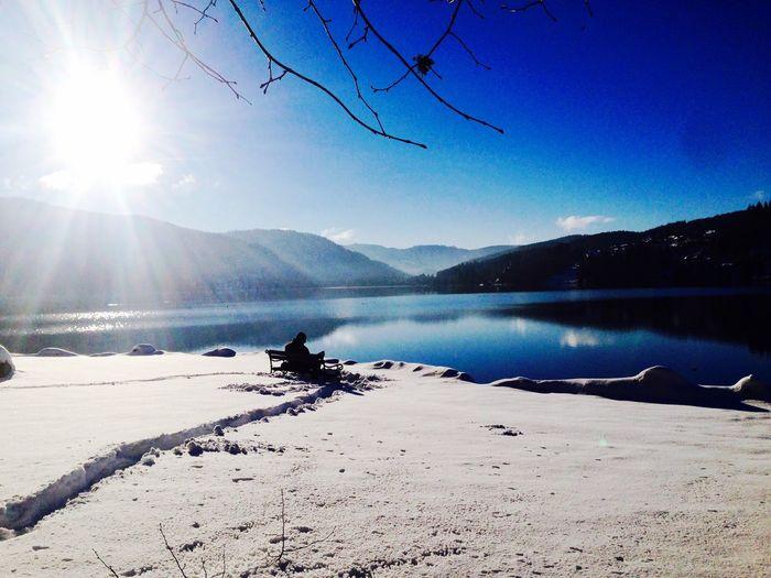 Winter Snow View Lake Outdoors Titisee Season  Nature Relaxing Enjoying Life
