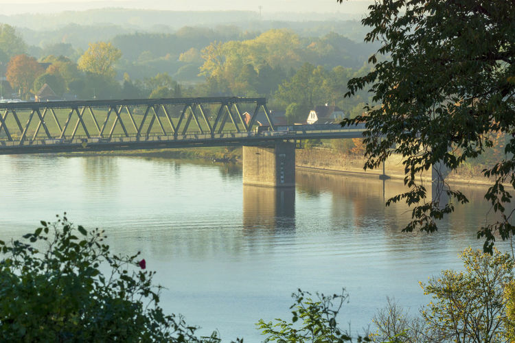 Elbe bridge in Germany in the morning Water Bridge Plant Connection Tree Bridge - Man Made Structure Built Structure Scenics - Nature Architecture River Beauty In Nature No People Outdoors Day Transportation