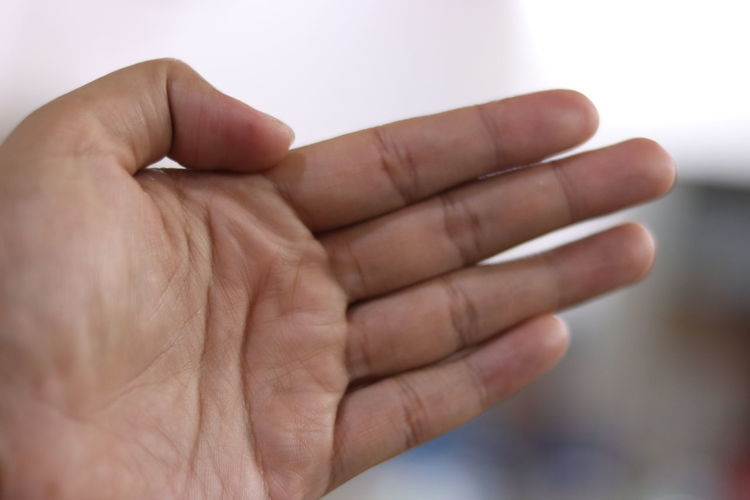 Cropped hand of person outdoors