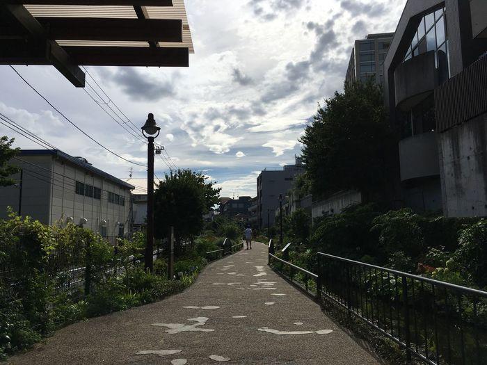 Summer Japan