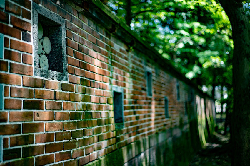The oldest brick wall in Kanazawa Calm Shrine Architecture Brick Wall Historical No People Old Outdoors Plant