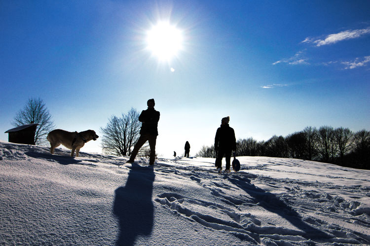 Shadows on the snow MR7 Beauty In Nature Canon Cold Temperature Dog Domestic Animals Field Full Length Landscape Leisure Activity Lifestyles Mammal Men Nature Outdoors Pets Real People Shadow Silhouette Sky Snow Sun Sunlight Togetherness Winter