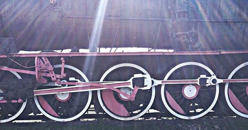 anlatılanlar başka, yaşananlar başka. 📷🌞🚂 Lggozunden Objektifimden Benimkadrajim Bestpic Like4like Nomakeup Turkish Anıyakala Lgg4photography Turkishfollowers Bestoftheday Throwback Followme Nofilter Picoftheday Photooftheday Turkey Amazing Photography Details Taking Photos Hayatakarken Happy Train Lgg4farki