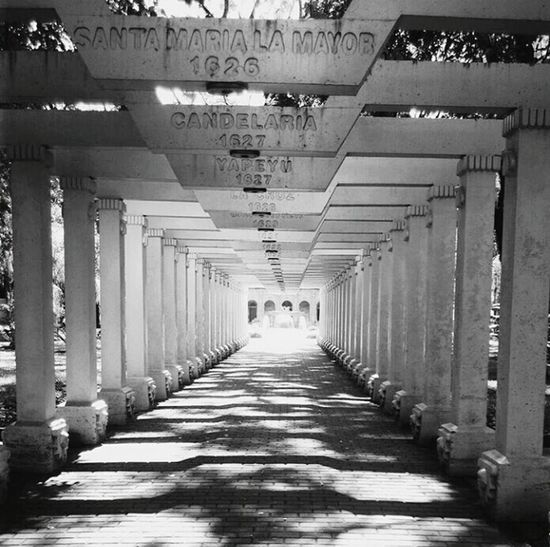 Corridor Indoors  The Way Forward Architecture Built Structure No People Day