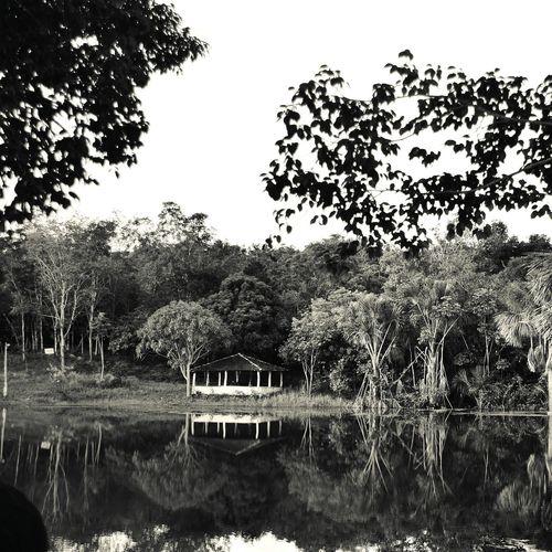 Lake Lago Pb Blackandwhite Nikon Preto & Branco Brasil Natureza Casa Espelho