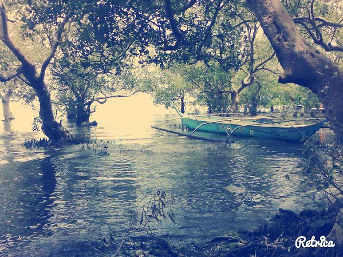 EyeEm Nature Lover Love ♥ Postcardview