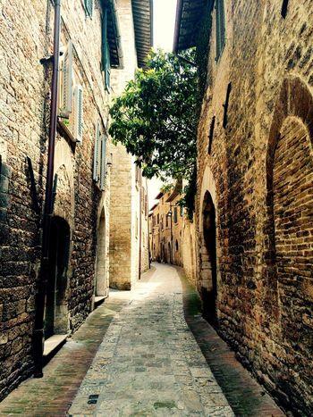 Italy Idyllic Alley Pathway Narrow Assisi Showcase July EyeEm Selects