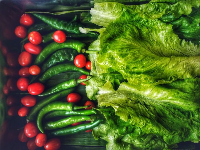 Fresh vegetables Green Color Vegetable Healthy Eating Food And Drink Food Freshness Variation Close-up Nature Red High Angle View