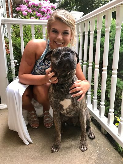 Pet Portraits Maximus sending sissy off to prom 😭 Maximus Pitbull