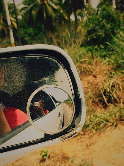 On the road Reflection Tree Close-up Outdoors Nature Side-view Mirror Day No People Vehicle Mirror