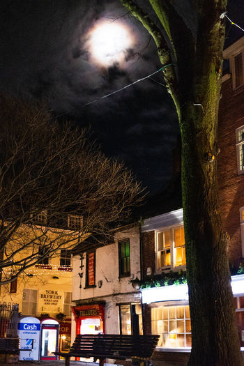 Once upon a time in York Building Exterior Architecture Built Structure Tree Night Building Plant Illuminated Cloud - Sky Sky Nature No People City Residential District Outdoors Bare Tree House Street Low Angle View Tree Trunk EyeEm Streets EyeEm Gallery