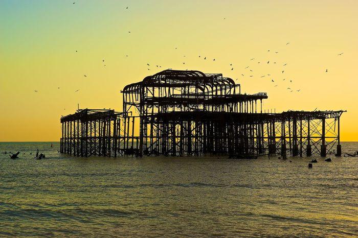 Flocking round the remains. Brighton Frame Sea Seaside Beach Pier Aftermath Burntout
