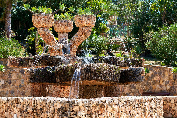 Fountain in the Dino Park of Algar. Spain Alicante Province Spain DinoPark Exotic Fountain Nature SPAIN Splashing Water Sunlight Dino Park Exotic Plants Fountain_collection Landscape No People Nobody Outdoors Splashing Sunny Day Vegetation