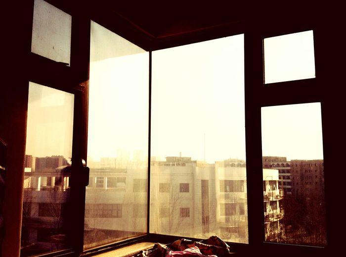 不管多么难受,一看到阳光好像就都忘了。这么多年都没变。 First Eyeem Photo