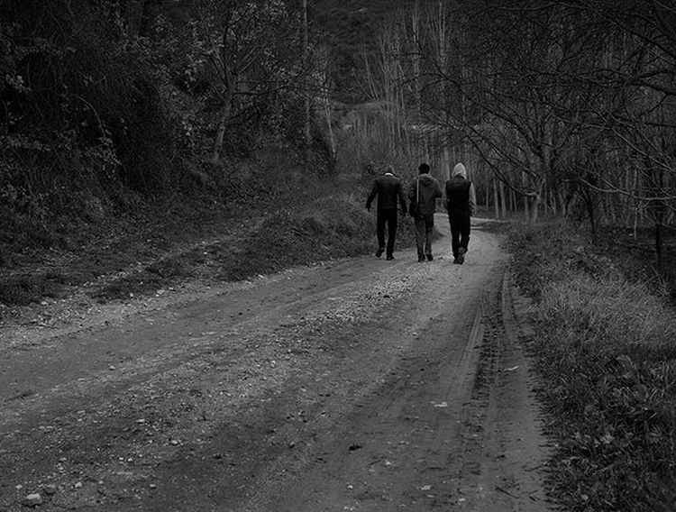 Taraklı Sakarya Blackandwhite Blackandwhitephotography Men Walking Forest Fresh Air Freshair Path Tree Classmates