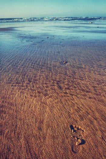 Beach Surf Spot Jack Beach