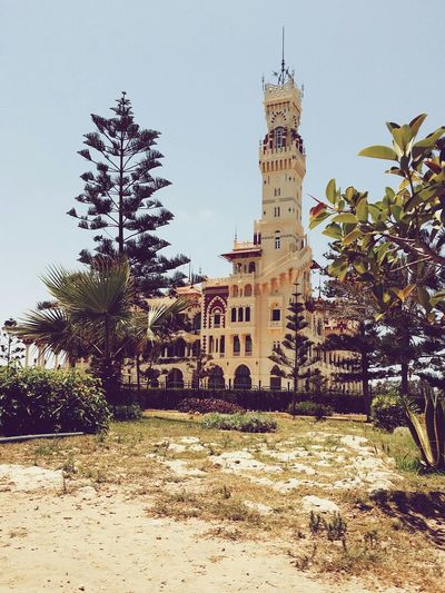 Trees Garden Egypt Eyeem Egypt Elmontazah Palace Luxury Alexandria Architecture Architecturelovers