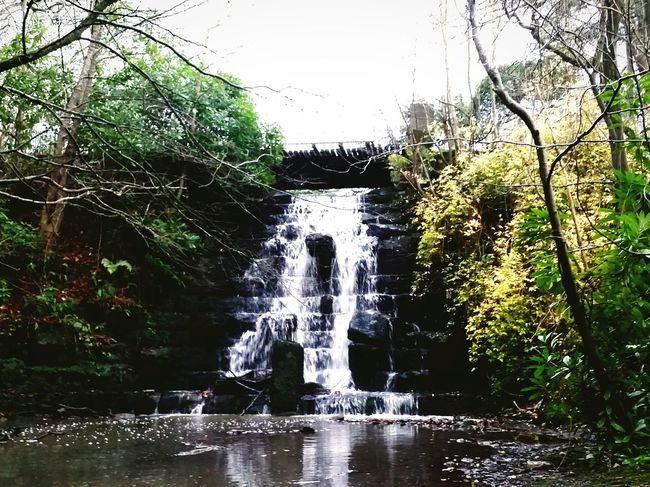 Waterfall Arrowe Park Arrowe Brook Wirral Merseyside