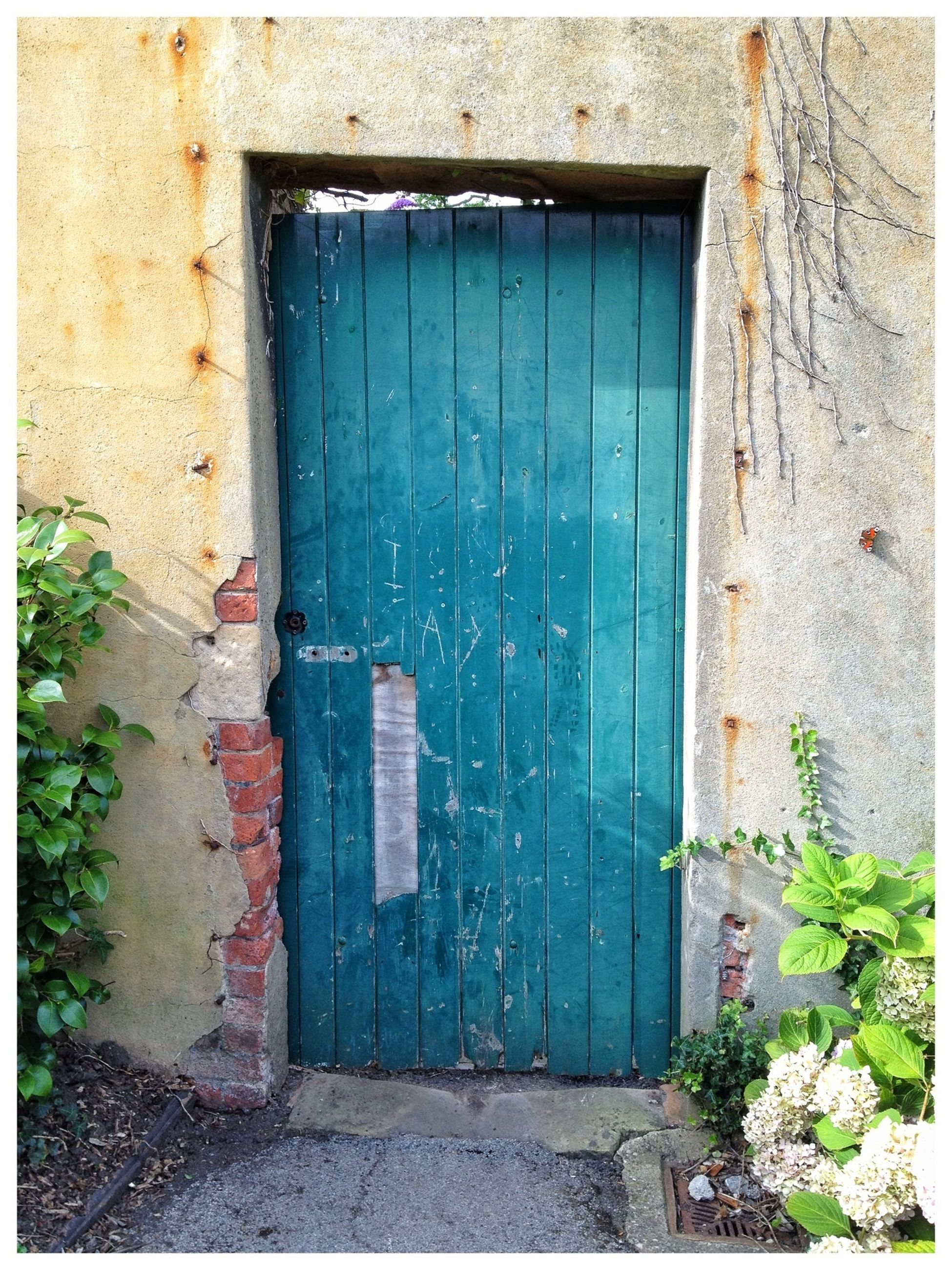 built structure, architecture, building exterior, door, closed, house, window, weathered, old, entrance, residential structure, safety, wall - building feature, wall, abandoned, protection, plant, damaged, day, wood - material