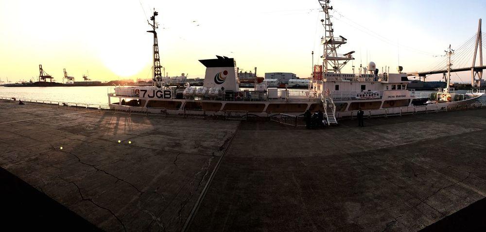 長崎から船が来てました。 Ferry Ferry Views Vessels In Port Marine Sea Sunset Osaka,Japan Kaiyukan Vessel Ship