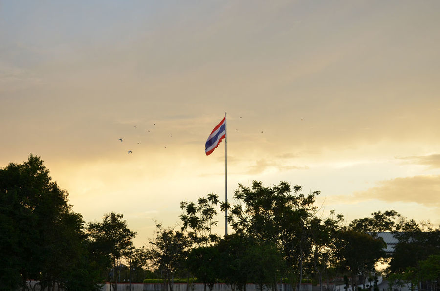 Thai Thailand Walailak University Cloud - Sky Flag Freedom Nature Outdoors Sky Sunset Thailand Flag Tree Wind