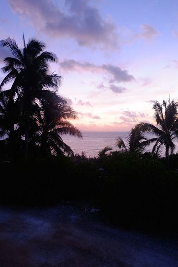 Today's sunset Christmasisland Sunset Ocean Coconut Trees