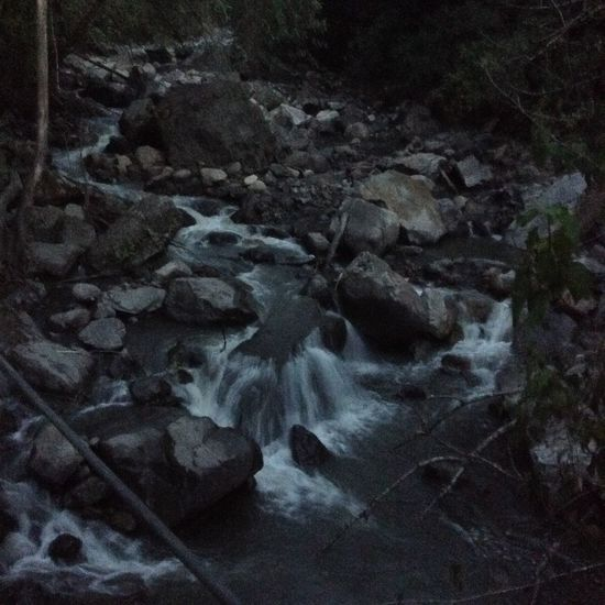 Cascade Cascades Forest Forest Trees Lowsun Nightphotography River Shadow Tropical Climate