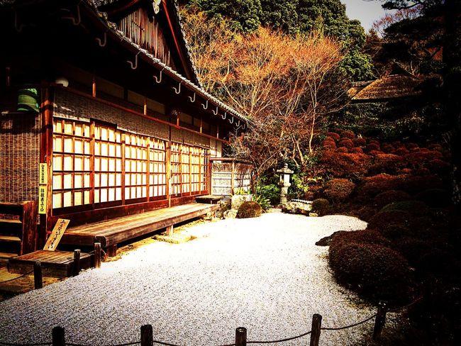 金福寺 京都 一乗寺 Relaxing Kyoto 庭園 寺社仏閣