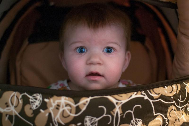 Portrait of cute baby girl in stroller