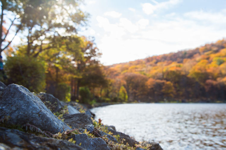 One corner of Hessian Lake. Una esquina de el Lago Hessian. #bearmountain #hessianlake #eabreutravels #newyork #iloveny #lake hudson Nature Tree Water Tranquility Beauty In Nature Scenics No People Outdoors Rock - Object Forest Tranquil Scene Day Sky Landscape