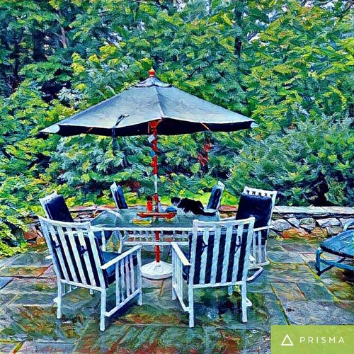 Patio, pet cat, Outdoors Relaxation Nature Tranquil Scene Blue Green No People Tree Solitude Non-urban Scene Autumn Animal Cat Feline Domestic Cat Beauty In Nature WoodLand Scenics One Animal Season  Focus On Foreground Empty Table Absence Chair