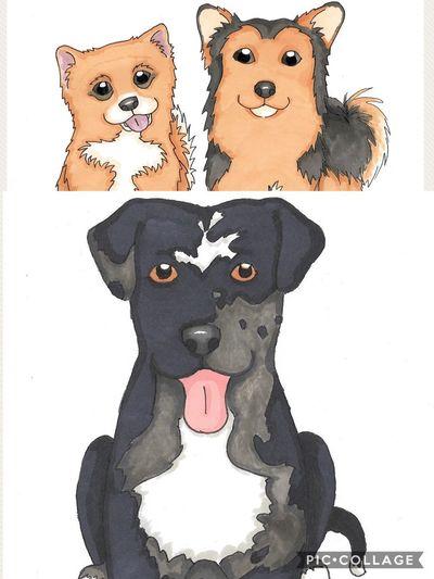 Cartoons of Freyja, Loki & Quinn Ginger Cute Black And Tan Merle Bull Lurcher Pomgrel Dogs Cartoon Hand Drawn EyeEm Selects Art And Craft Creativity Anthropomorphic Face