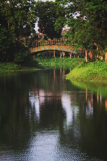 Bridge Eyem Nature Lovers  Shaddow Travel Photography Beaitiful View Lake View Nature_collection Boat Ride Serenity South