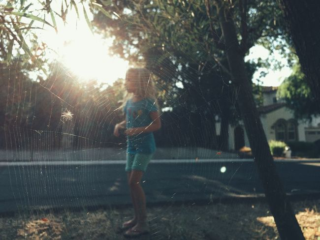 Spiderweb Curiosity Blonde Girl Kid Playing Outdoors