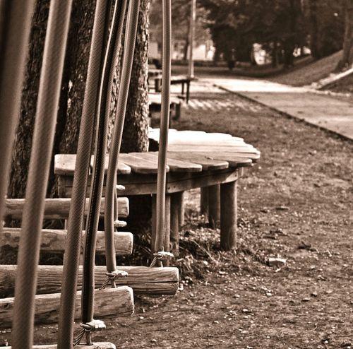 Park Vintagefilter Photography