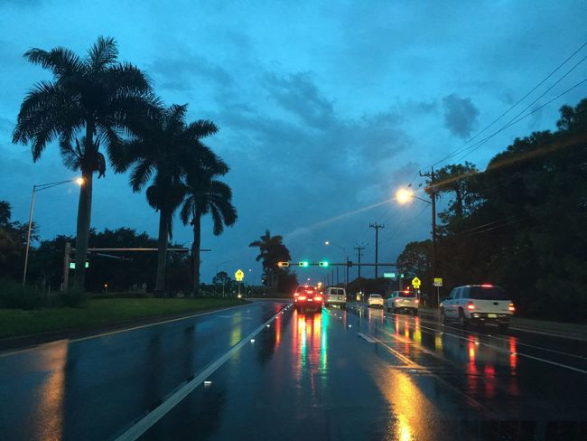 Illuminated Transportation Road Palm Tree Street Night Car Tree Blurred Motion Sky Tail Light Outdoors Cloud - Sky Dark The Way Forward