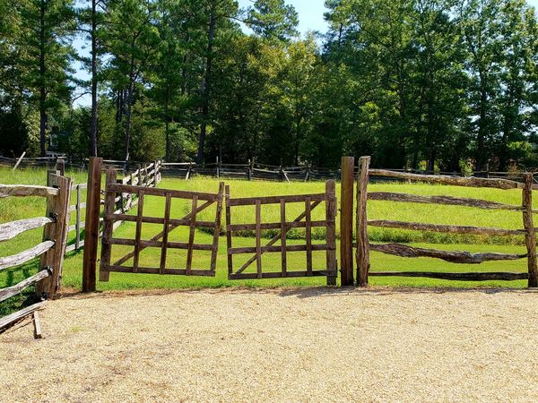 Handmade Gate Split Rail Fence Paddy Field Farm Life Farmland Pasture Landscape Tree Protection Safety Field Sky Grass Green Color Gate Entrance Fence Latch