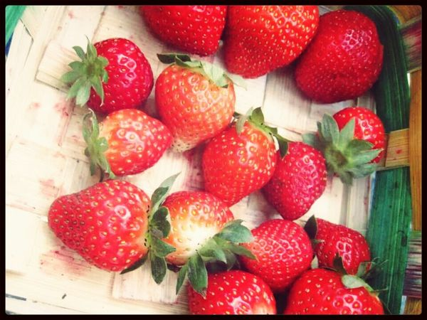 Freshly picked strawberries! :)