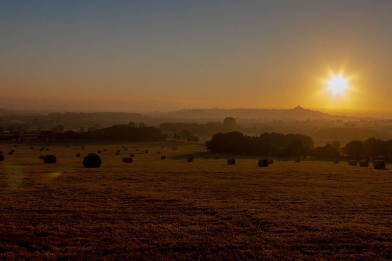 Morning has broken Glastonbury Tor Sillouette Morning Morning Light Morning Sky Somerset Somerset Levels Uk Glastonbury Tor Hay Bale Tree Rural Scene Sunset Beauty Cereal Plant Wheat Agriculture Dawn Field Waking Up Sunrise - Dawn Bale