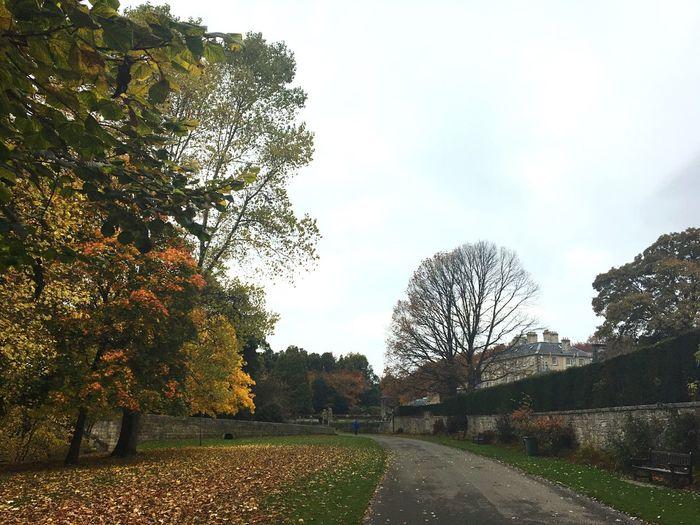 PollokPark Autumn