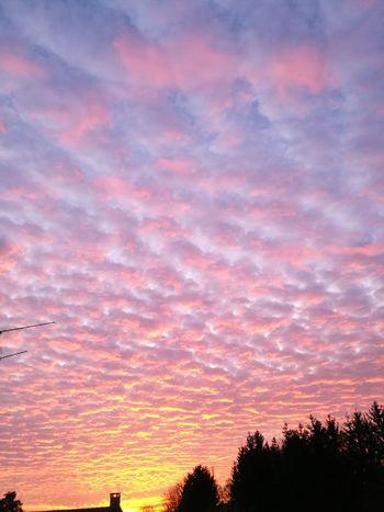 Pink Color Fallen Ciels Cielo Nuages Et Ciel Tombées De La Nuit Sunset Sunset_collection Nature Sunsetmoment Sunsetmood Fallingskies Skies Sunsets Clouds Colors