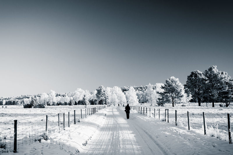 Wintertime Beauty In Nature Black And White Clear Sky Cold Temperature Copy Space Day Field Landscape Monochrome Nature One Person Outdoors People Real People Scenics Sky Snow The Way Forward Tranquility Tree Winter Winter Wonderland