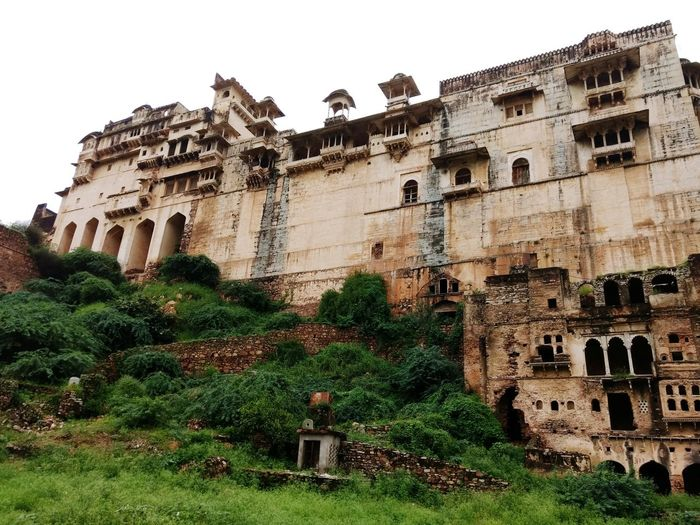 Royal palace... Rajputana Ancient Civilization Old Ruin Ivy History Castle Window Arch Ancient Architecture Building Exterior Palace Fortified Wall Civilization Fort Archaeology Historic Historic Building Bad Condition Stone Wall