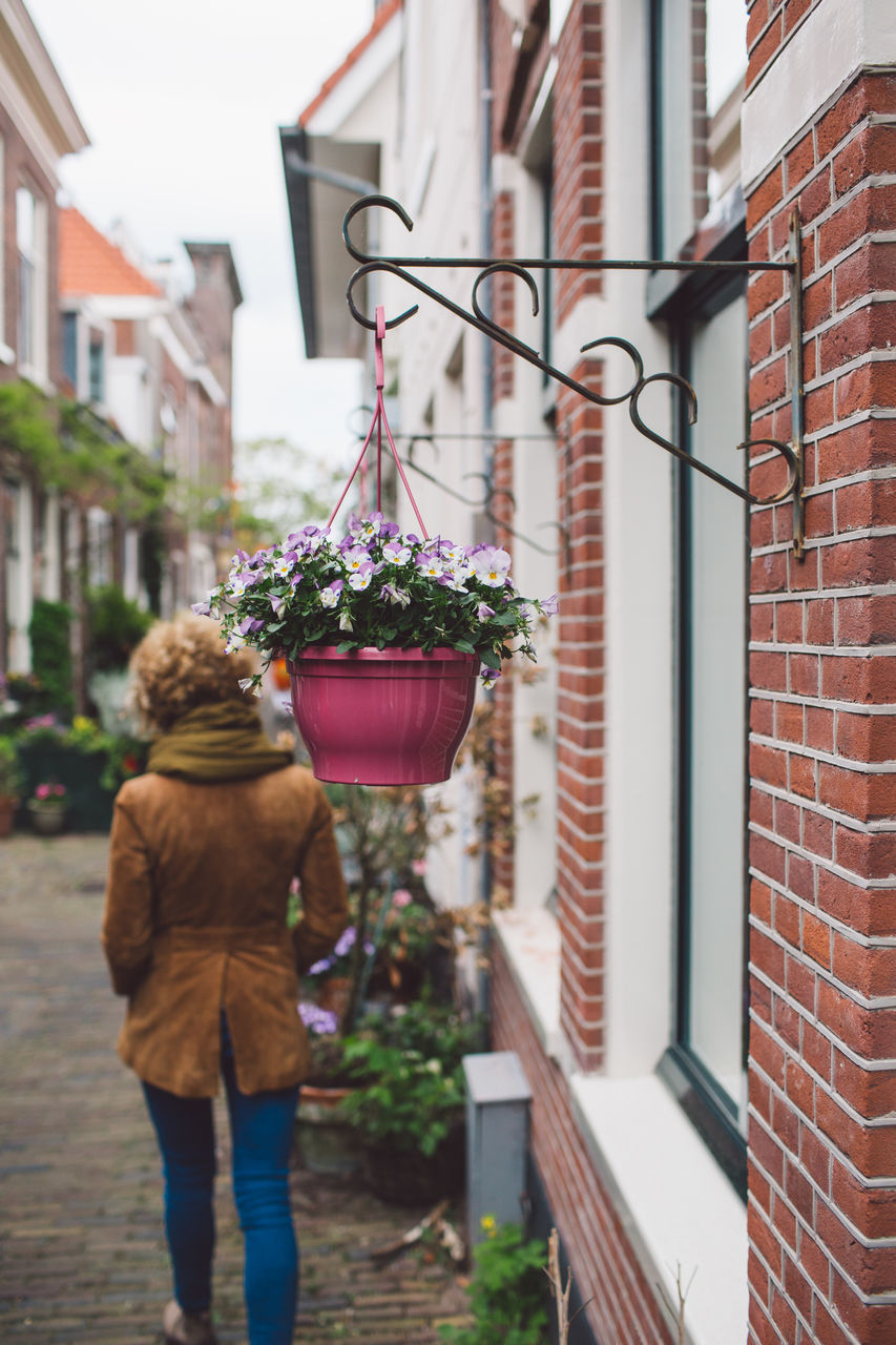 building exterior, architecture, built structure, building, city, plant, flower, flowering plant, real people, one person, focus on foreground, day, residential district, rear view, street, nature, lifestyles, house, outdoors, women, flower pot