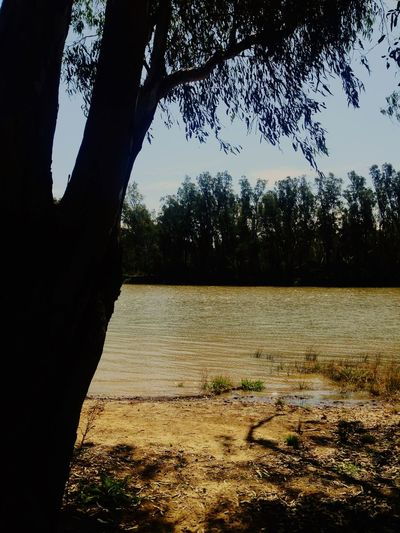 Grand final eve weekend. Murrayriver CampLife Camping Fuckthefooty Family Checkitout