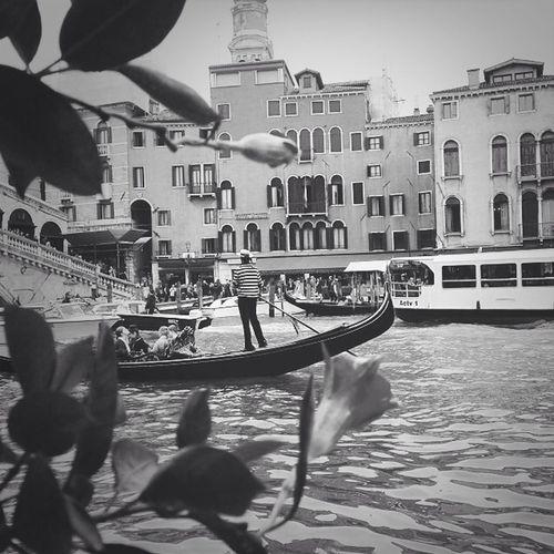 Venice GondolaPonte Di Rialto ItaliaBella