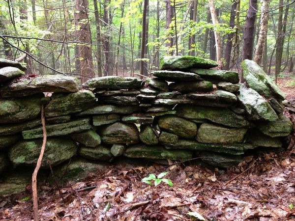 Walls created for expediency can last generations... Yankee wisdom. Mother Nature Is My Jailer... And My Mistress Hiking