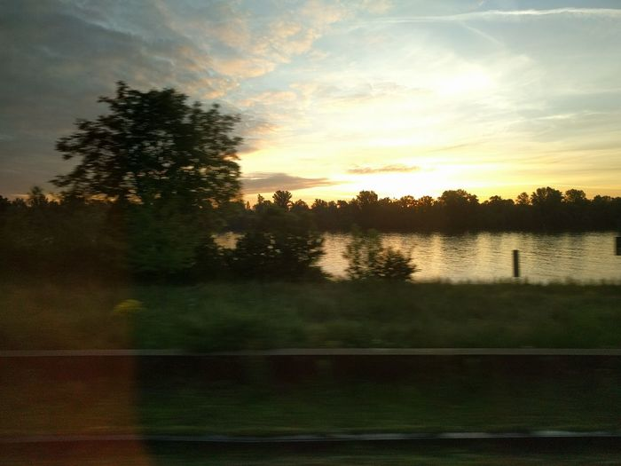 Sunset at Rhine river, shot from a driving car. #backhome #carrides #OnTheMove #Rhein Beauty In Nature Cloud - Sky Landscape Nature No People Outdoors Reflection Scenics Silhouette Sky Sommergefühle Sunset Tranquil Scene Tranquility Tree Water
